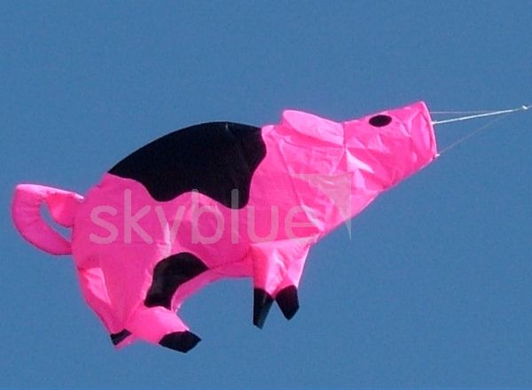 View Spirit Pig Windsock